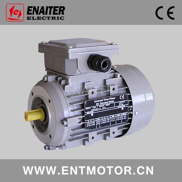 Ms Electric Three Phase AC Motor