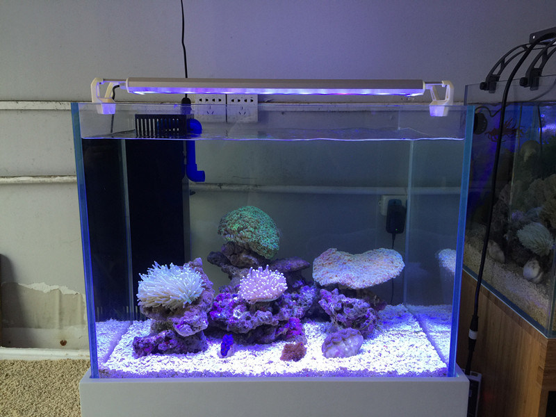 Coral Reef Tank Used Dimmble Aquarium LED with Ce RoHS UL