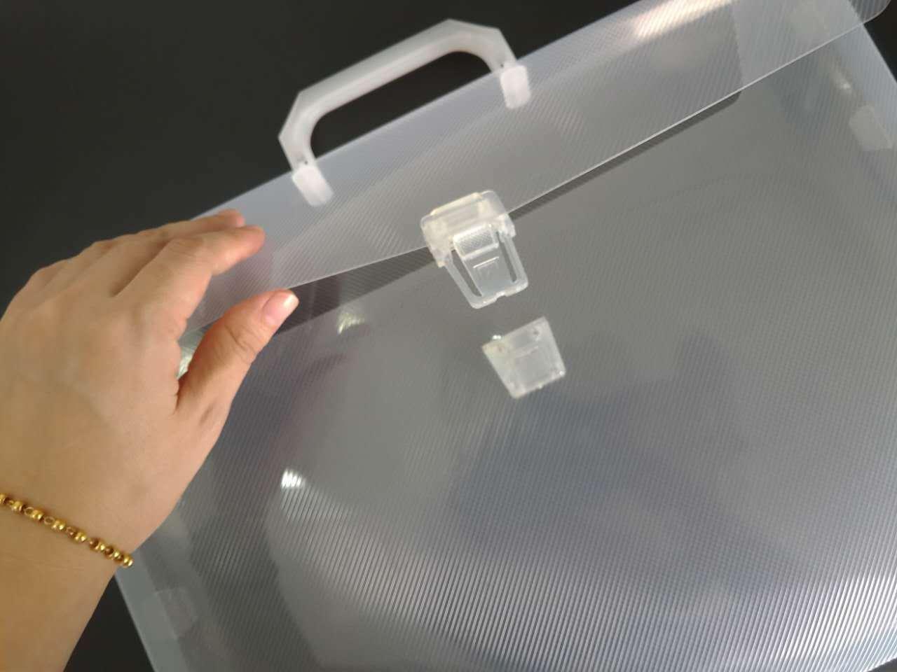 Custom Printing logo Plastic PP file/document folder (file bag)