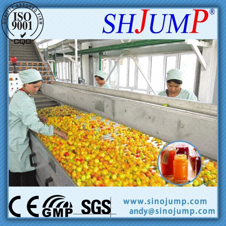 Apricot Processing Machine