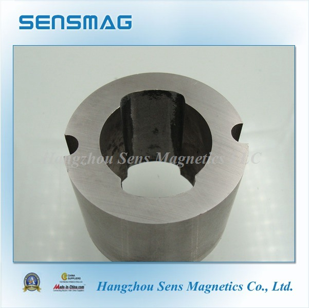 Manufacture Customized Permanent AlNiCo Ring Magnet for Motor Generator