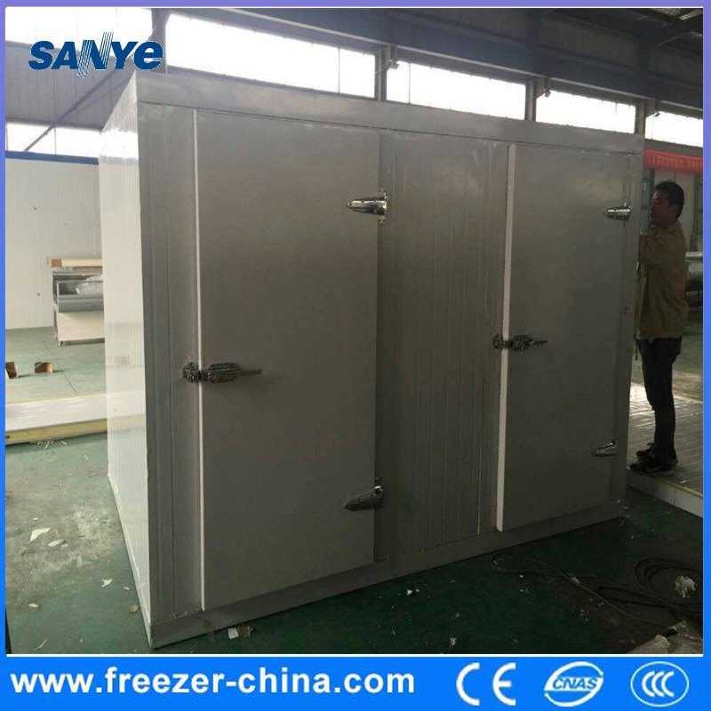 Custom Size Cooling and Freezing Cold Storage Room