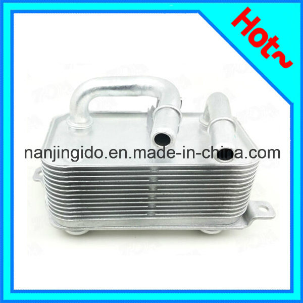 Auto Parts Car Oil Cooler for BMW E60 2003-2010 17217519213