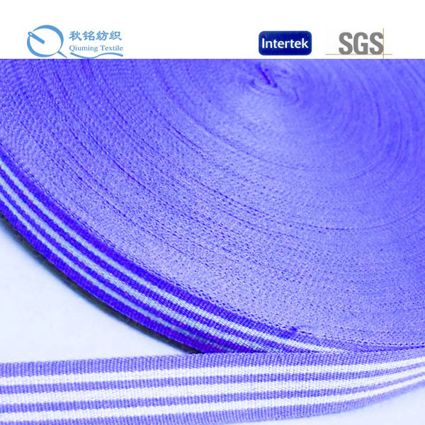 High Temperature Resistant Low Shrinkage Nylon Webbing