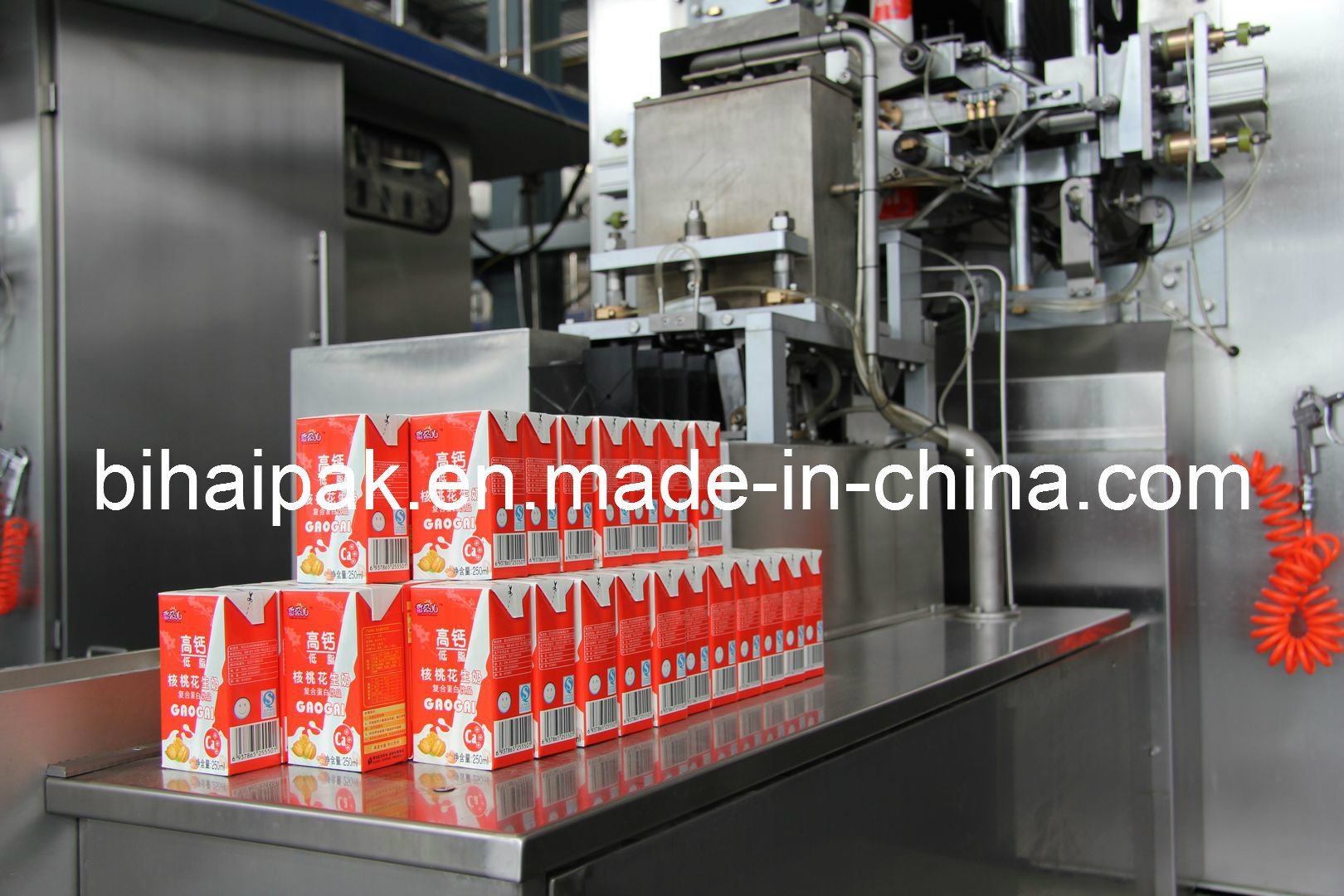China Bihai Liquid Juice Filling Machine
