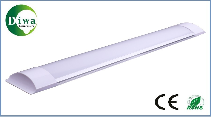 LED Slim Tube Light, CE IEC SAA Approved, Dw-LED-Zj-01