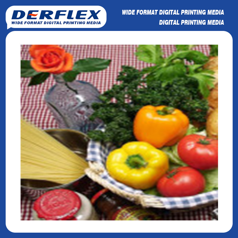 Dye Sublimation Print Polyester Fabric Textile for Flag Display Banner (DX4300)