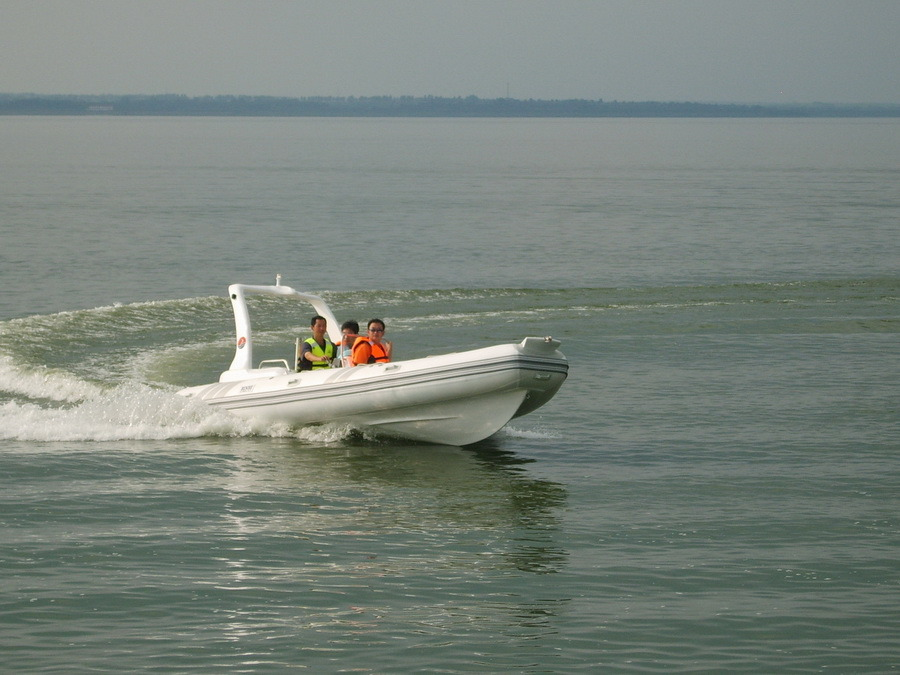 Rib Boat / Rigid Inflatable Boat (Rib580B) - Very Hot
