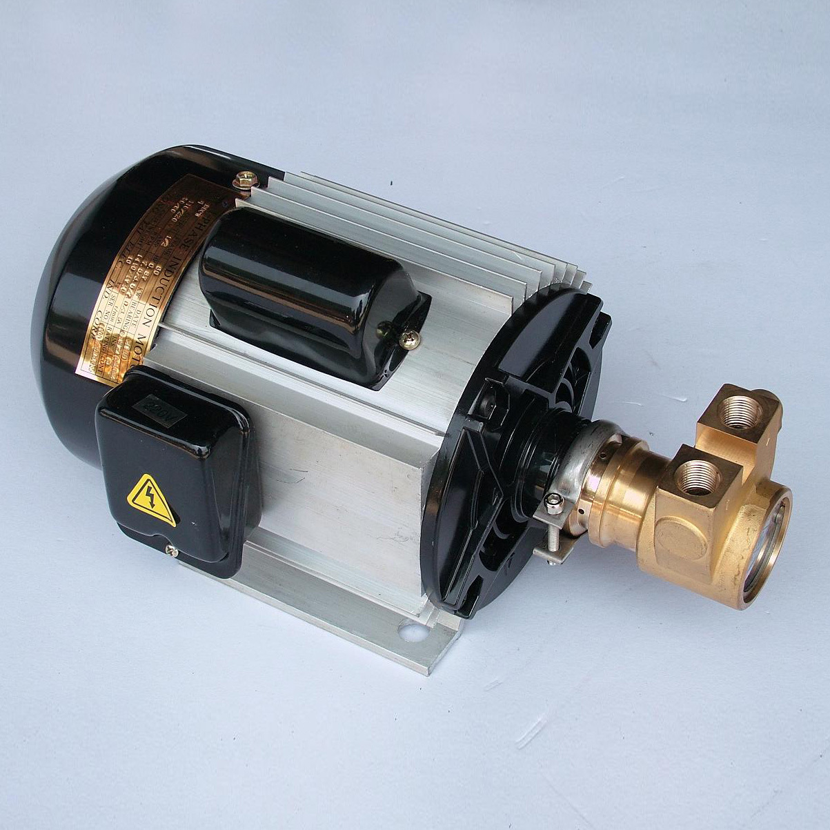 China Rotary Vane Pump - China Vane Pump, Rotary Vane Pump