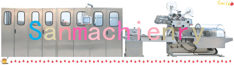 Baby Wet Wipes Making Machine, Wet Tissue Making Machine for You Need