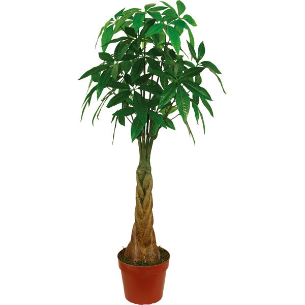 Green Artificial Plants of Fortune Tree