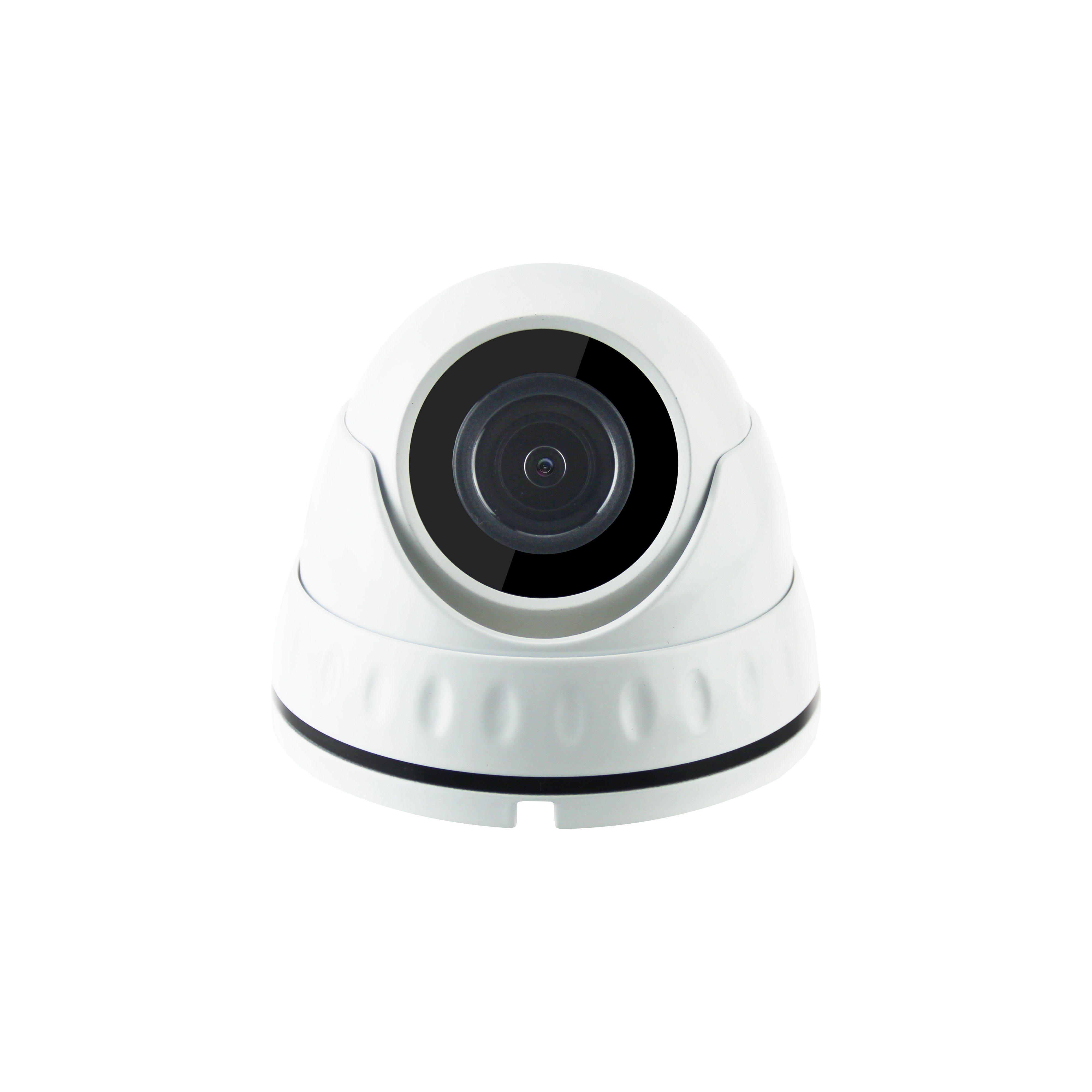 Hot Waterproof Dome Sony Sensor IP Camera (SL20)