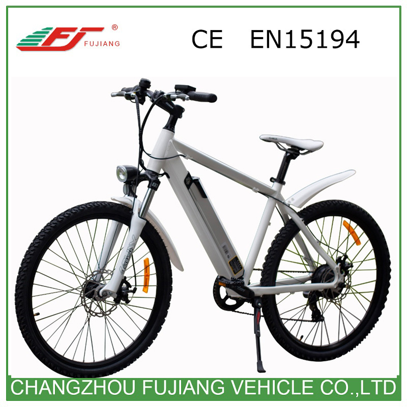 Hot Sale Ce En15194 Road Electric Bike