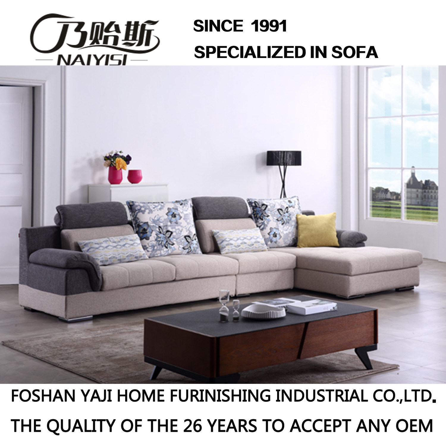 Modern Design Leisure Sofa for Living Room Home Furniture -Fb1145