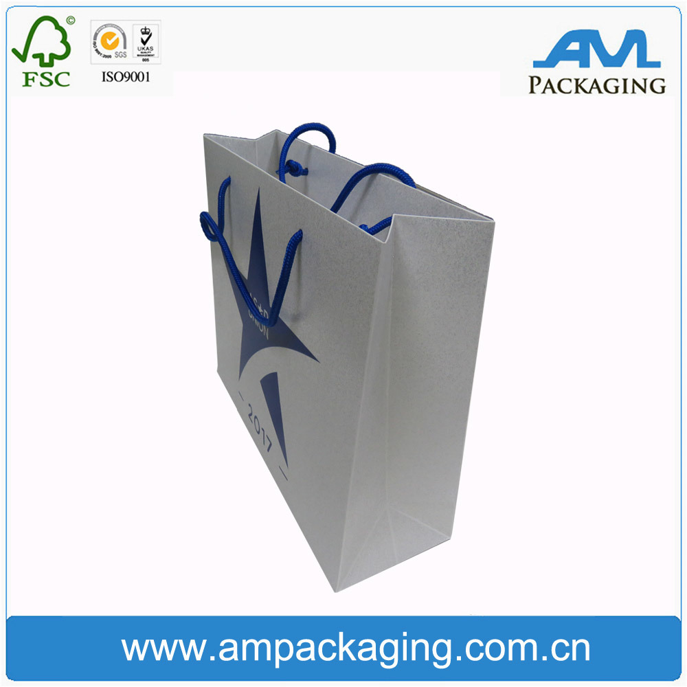 Shopping Custom Printing and Rope Handle Luxury Gift Paper Bag