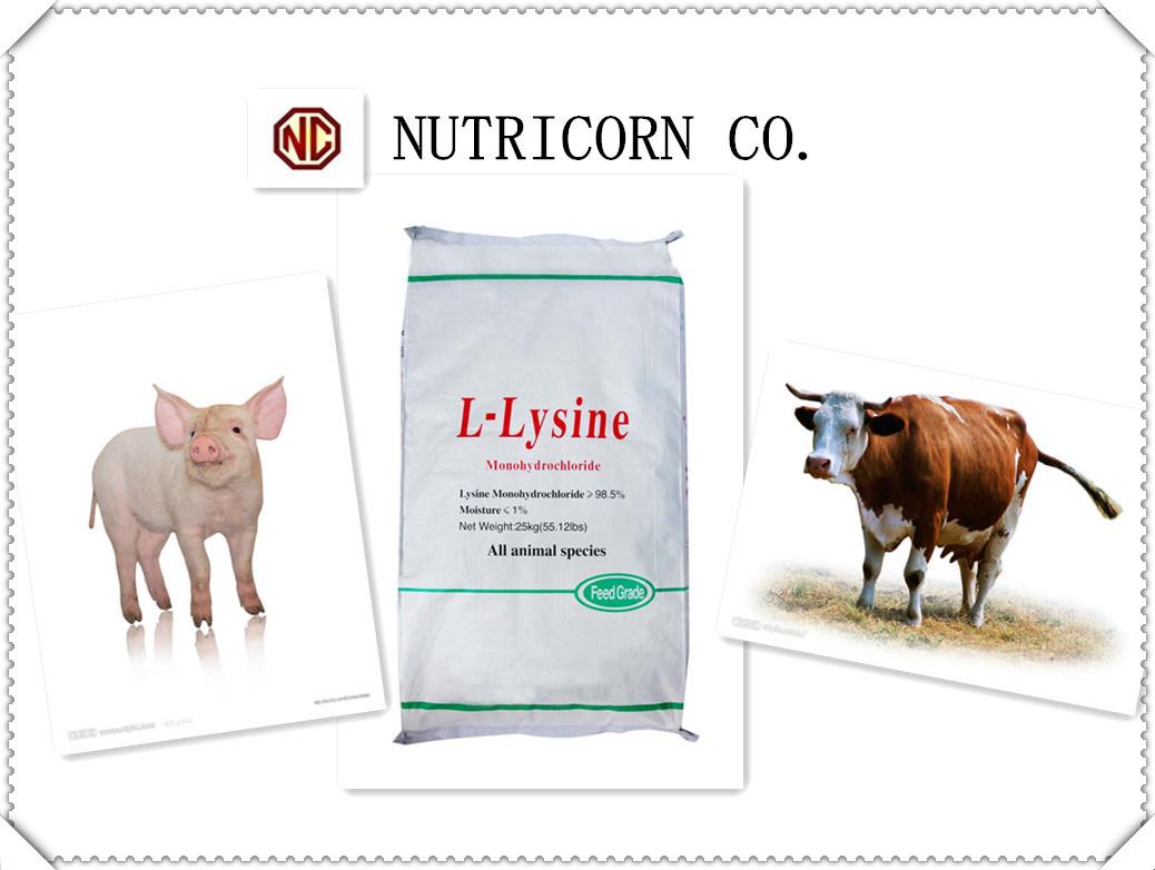Nutricorn 70% Feed Grade Lysine with High Quality