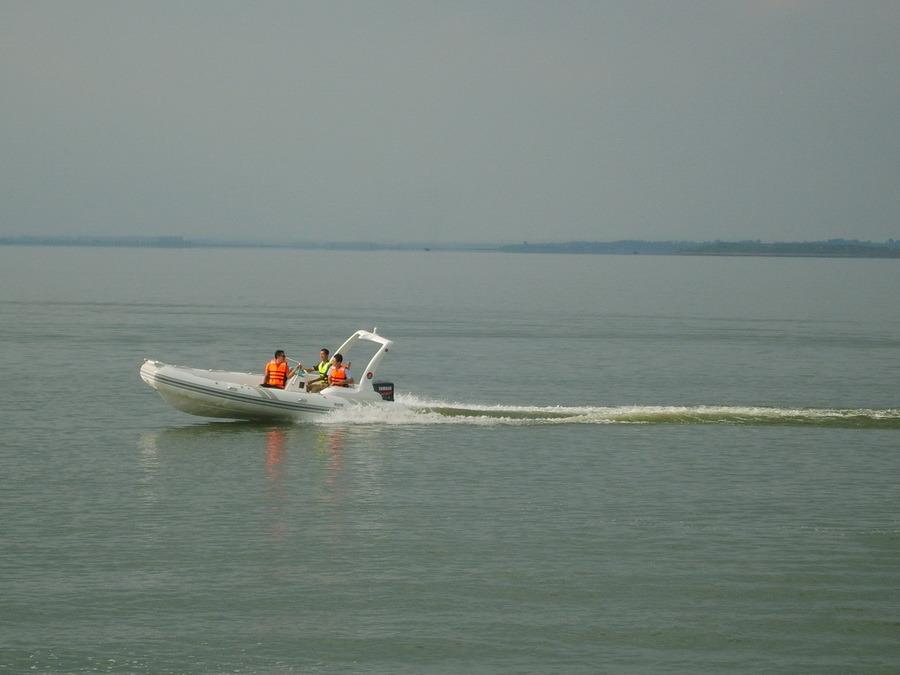 Rib Boat RIB520C-- New Model