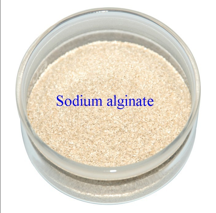 Sodium Alginate (LT110328)