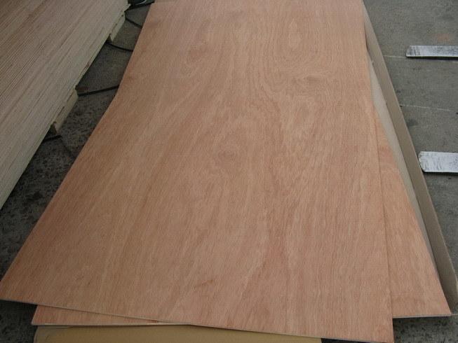 China bintangor plywood sheet mm