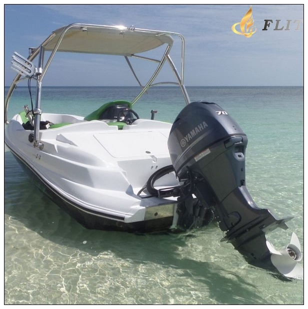 Jiujiangflitboating Outboard Engine Ski Fish Sport Boat 460b