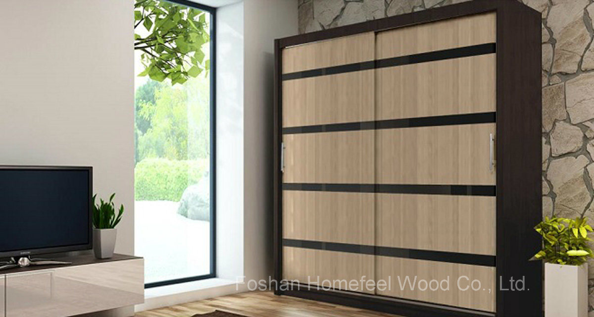 Professional Manufacturer Sliding Door Bedroom Wardrobe (HF-EY0211)