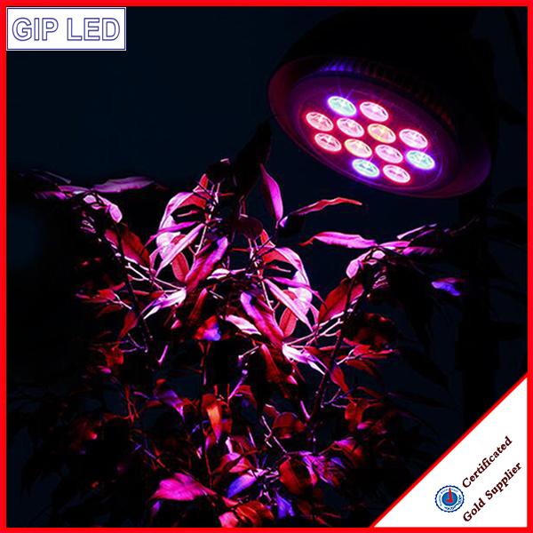E27 12W High Brightness Edison Plastic Restaurant LED Grow Light