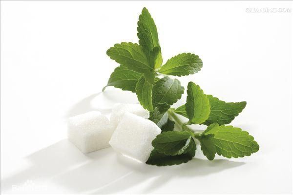 Stevia Leaf Extracts P. E. 90% Min. Natural Sweetner