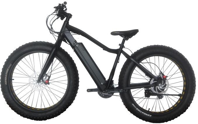 Fat Electric Bike,
