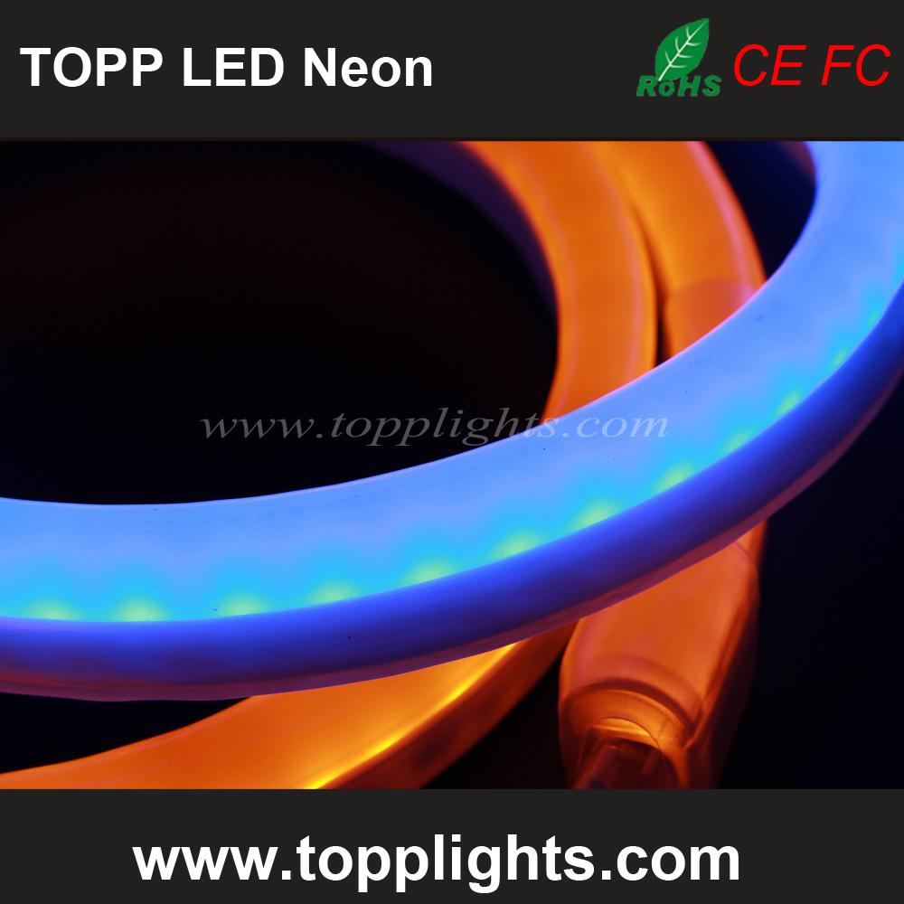 Christmas Decoration LED Strip Light LED Strip Neon