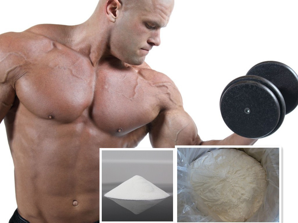 China Supply Testosterone Decanoate/Neotest 250 Powder Best Price Gain Muscle