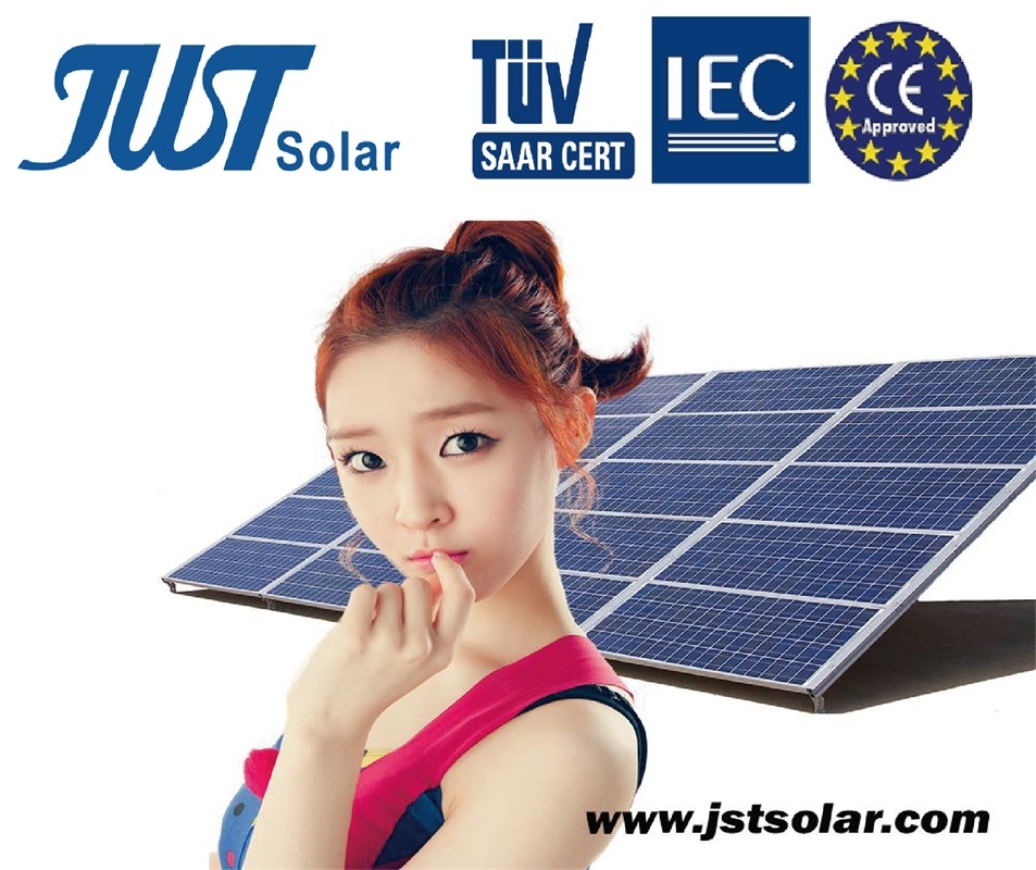 High Quality 250W Poly Solar Panel with 25 Years Warranty