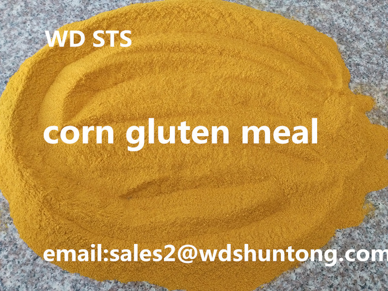 Corn Gluten Meal for Animal Feed with High Protein
