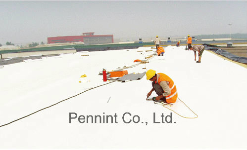 Best Quality Homogeneous/Reinforced Tpo Waterproofing Material Roofing Membrane