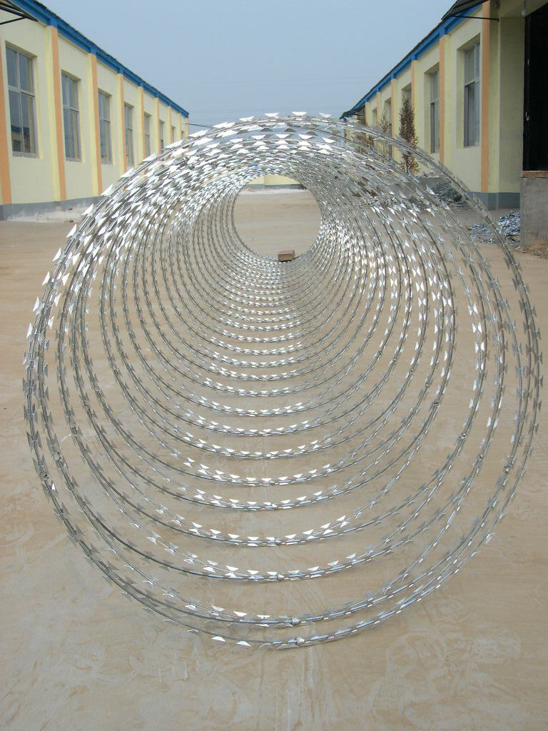 China single coil razor barbed wire