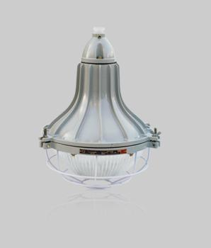 Zone 2 Safety-Increased Explosion Proof Light