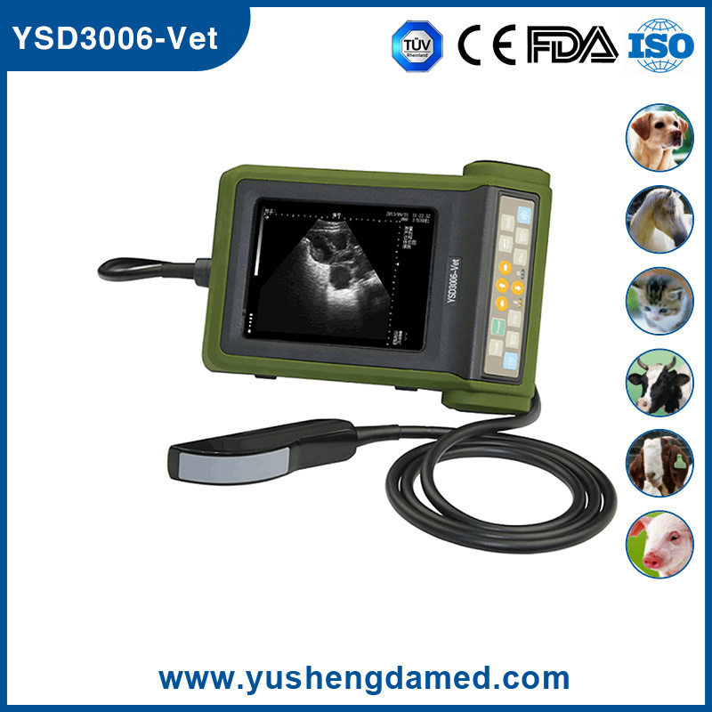 Ysd3006-Vet Ce ISO Approved Veterinary Ultrasound Scanner