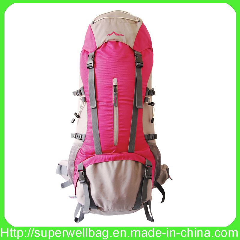 Professional Camping Backpack with Competitive Price & Good Quality (SW-0748)