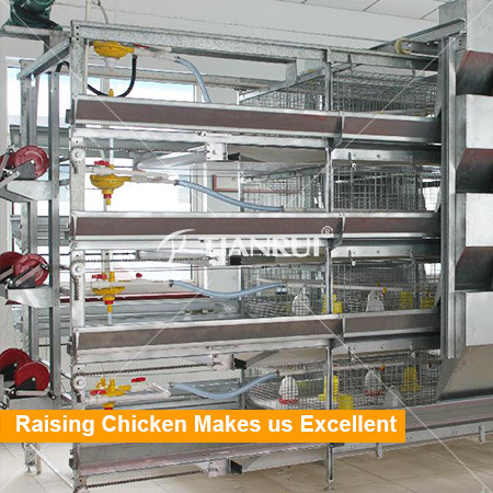 Galvanized Baby Chicken Cages Rearing House