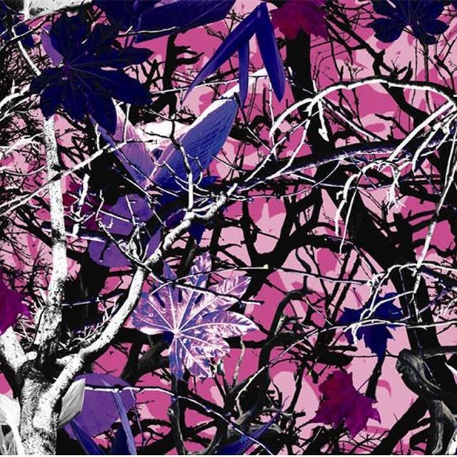 Tsautop Tscr9025 1m Width Camouflage Design Aqua Print Hydrographic Film