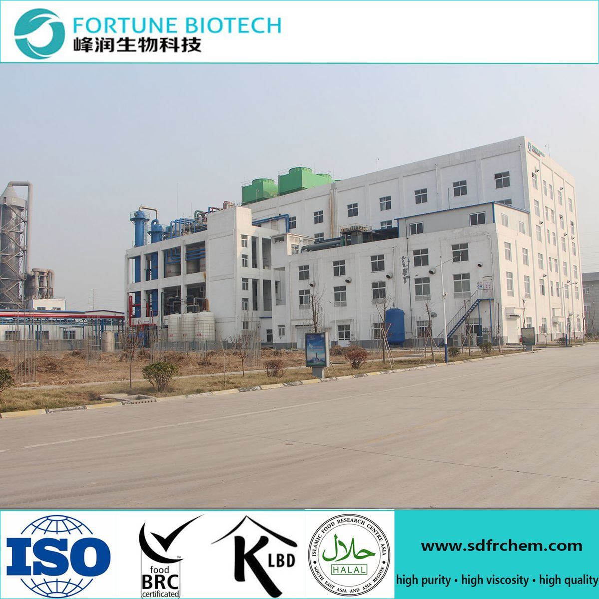 Fortune 2017 Hot Sale Paper Making Grade CMC with High Quality Best Price