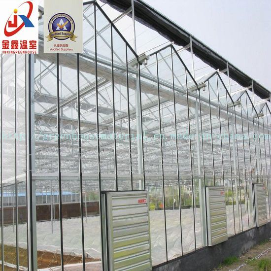 Venlo Type Glass Greenhouse for Vegetable and Flowers Growing