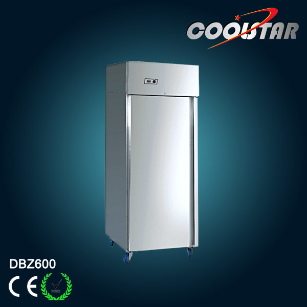 Commercial Refrigerator with Stainless Steel (DBZ600F)
