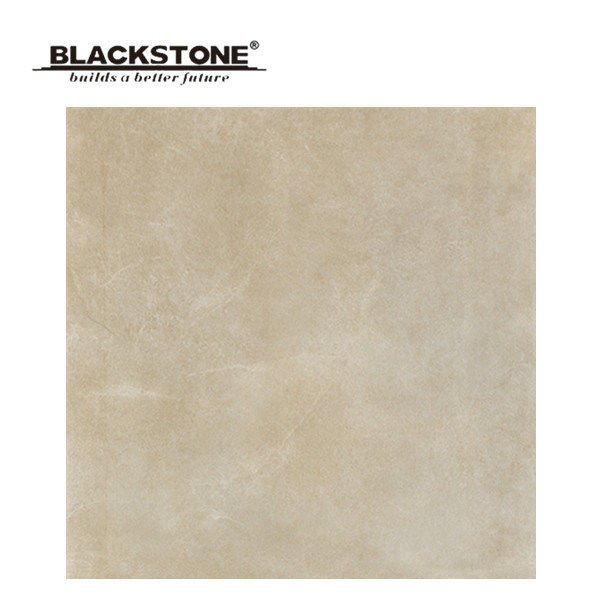 600X600mm High Quality Rustic Tile with Matt Surface (BCT01)