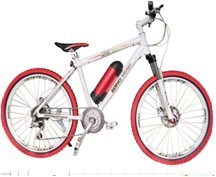 Mountain Electric Bicycle (TDE1201Z)
