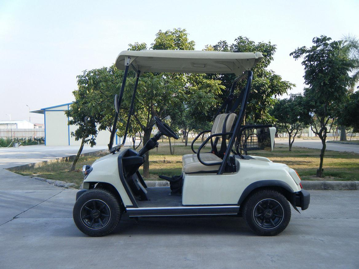 Hot Sale Ce-Approved 2 Seater Electric Golf Car