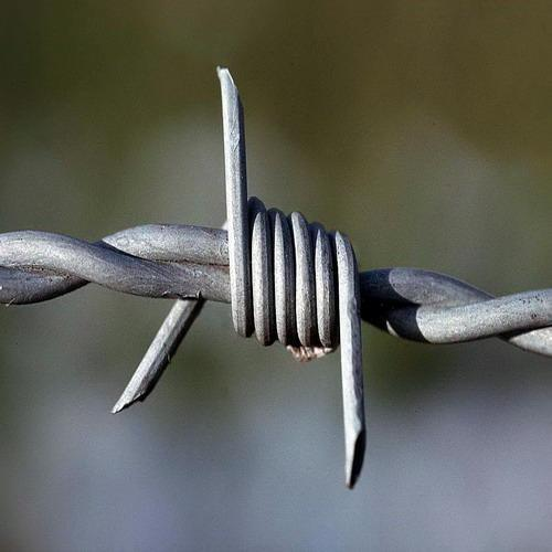 Barbed Wire/Plastic Covered Barbed Wire/ Razor Barbed Wire