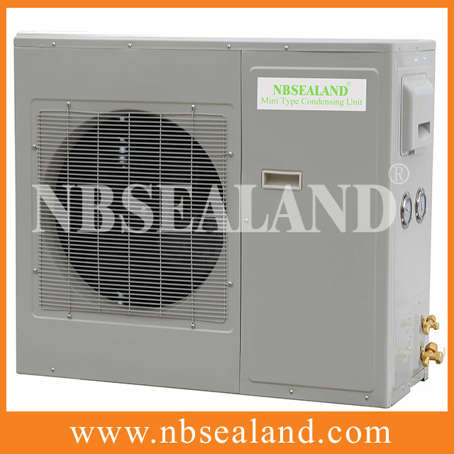 Condensing Unit for Fruit Cold Room