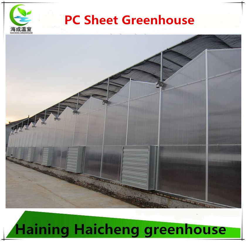 PC Sheet Vegetable Tomato and Flower Greenhouse