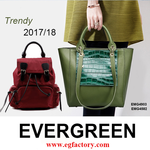 S/S 2017 Bags Catalog! Warmly Welcome Visit Evergreen Leather Big Showroom: ) Add Your Logo at Low MOQ
