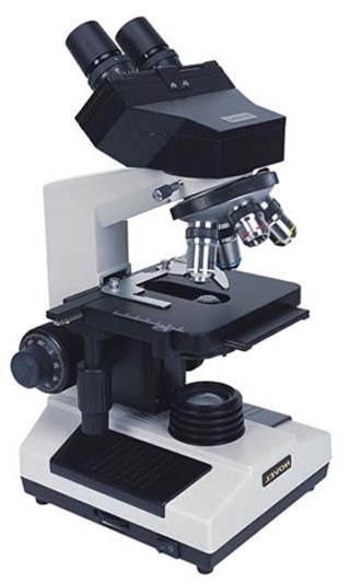 How to Identify Parts of a Compound Microscope: Learn to Diagram a